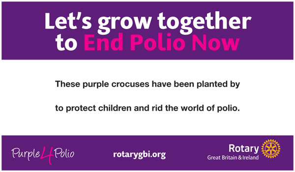 Rotary club polio campaign